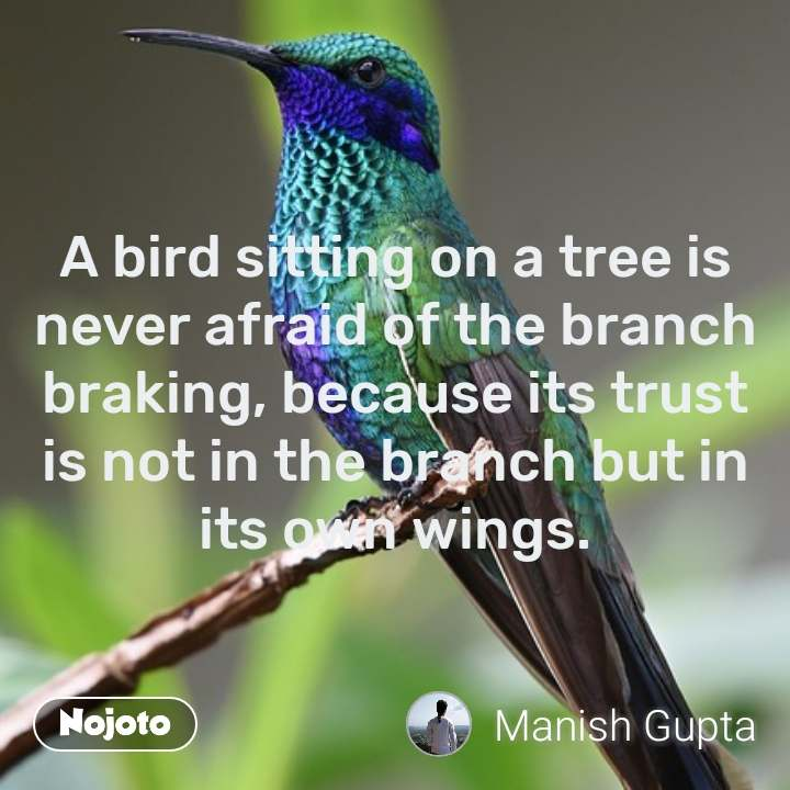 A bird sitting on a tree is never afraid of the branch braking, because its trust is not in the branch but in its own wings. #NojotoQuote