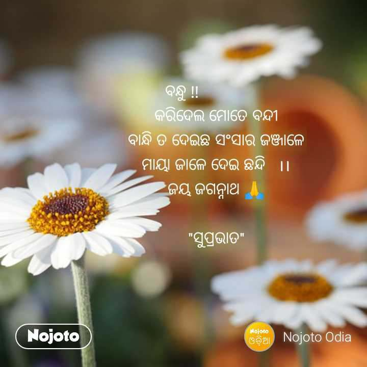 Good Morning Quotes In Odia Nojoto Quotes Nojotoodia