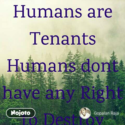 Humans Are Tenants Humans Dont Hindi Quotes Hindi Shayari