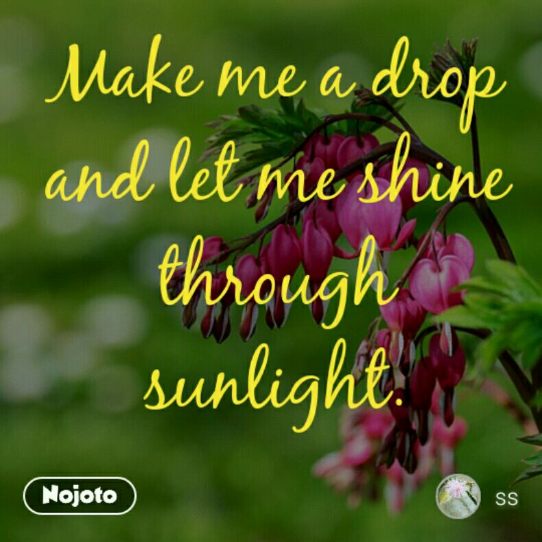 Make me a drop and let me shine through sunlight.