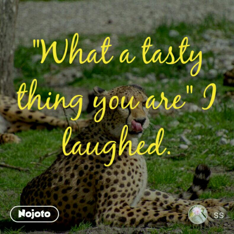 """""""What a tasty thing you are"""" I laughed."""