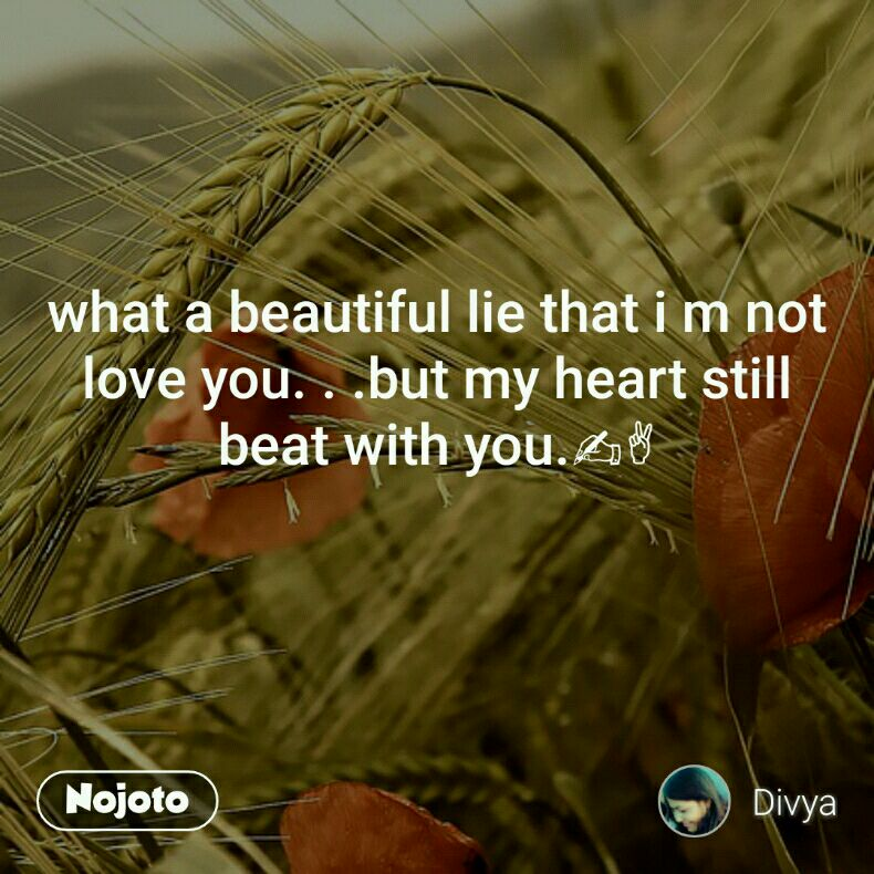 What A Beautiful Lie That I M Not Love You But My Heart Still