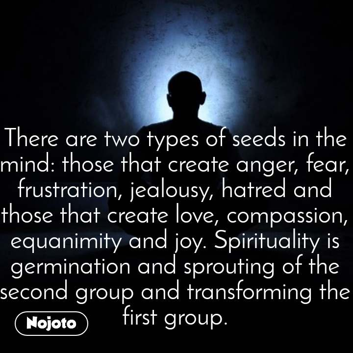 There are two types of seeds in the mind: those that create anger, fear, frustration, jealousy, hatred and those that create love, compassion, equanimity and joy. Spirituality is germination and sprouting of the second group and transforming the first group.