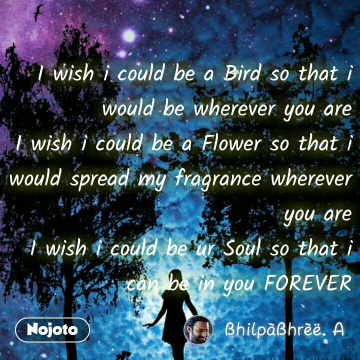 I wish i could be a Bird so that i would be wherever you are I wish i could be a Flower so that i would spread my fragrance wherever you are I wish i could be ur Soul so that i can be in you FOREVER