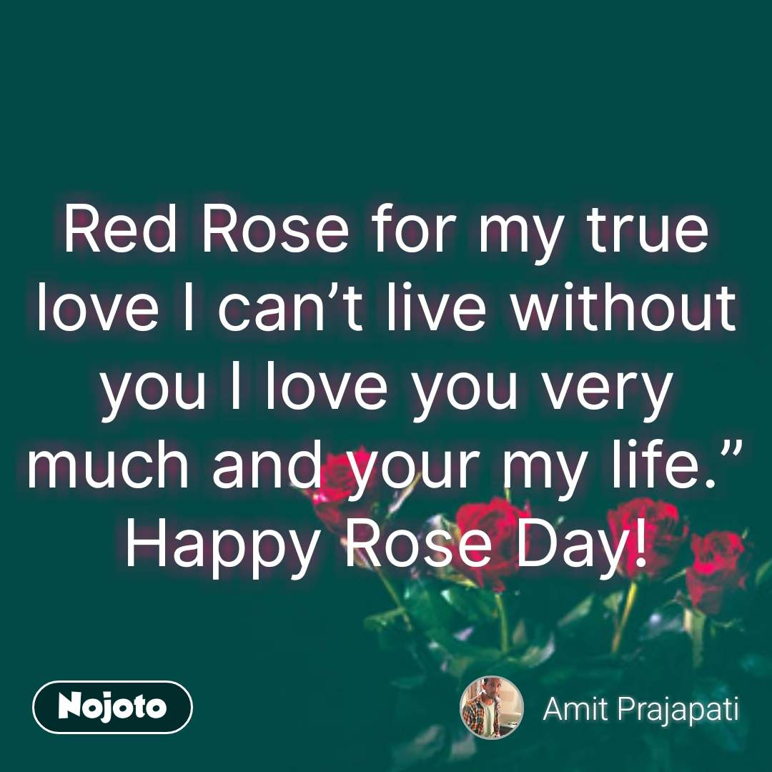 Rose day quotes for my love in hindi