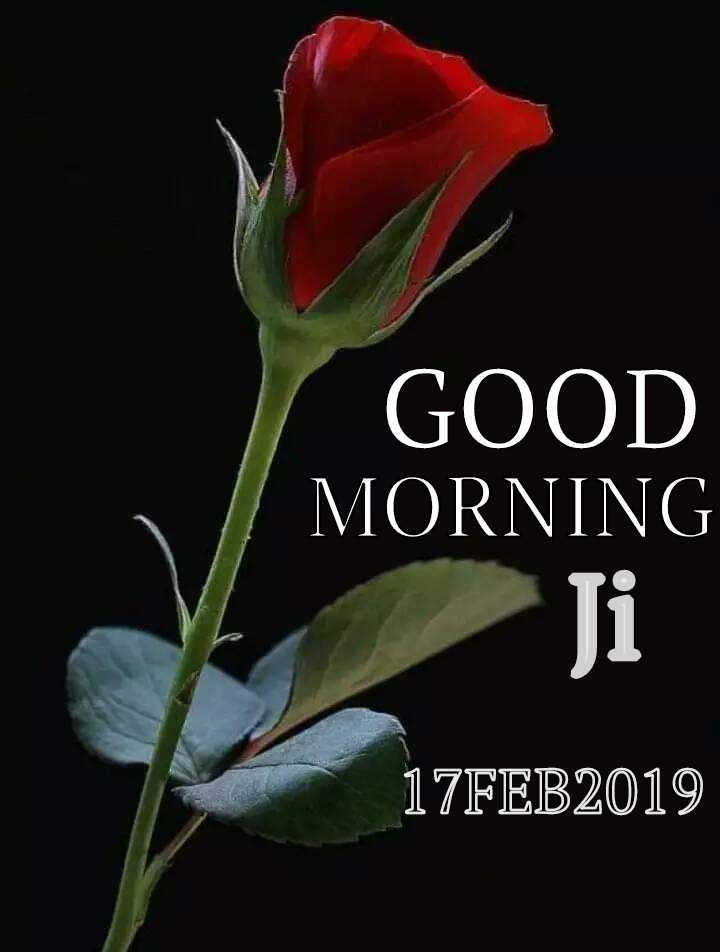 Good Morning Ji Quotes Shayari Story Poem Jokes Memes On Nojo