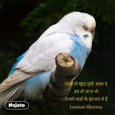 जन्नत तो खुदा तुम्हें  बख़्श दे  हम तो आज भी उनकी बाहों के इंतजार में हैं Laxman Sharma  #NojotoQuote