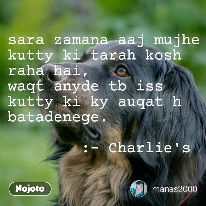 sara zamana aaj mujhe kutty ki tarah kosh raha hai, waqt anyde tb iss kutty ki ky auqat h batadenege.          :- Charlie's