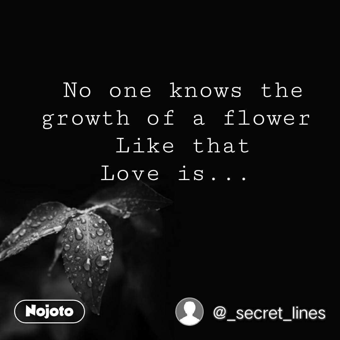 Good Morning Quotes In Hindi No One Knows The Growth Of A Flower L