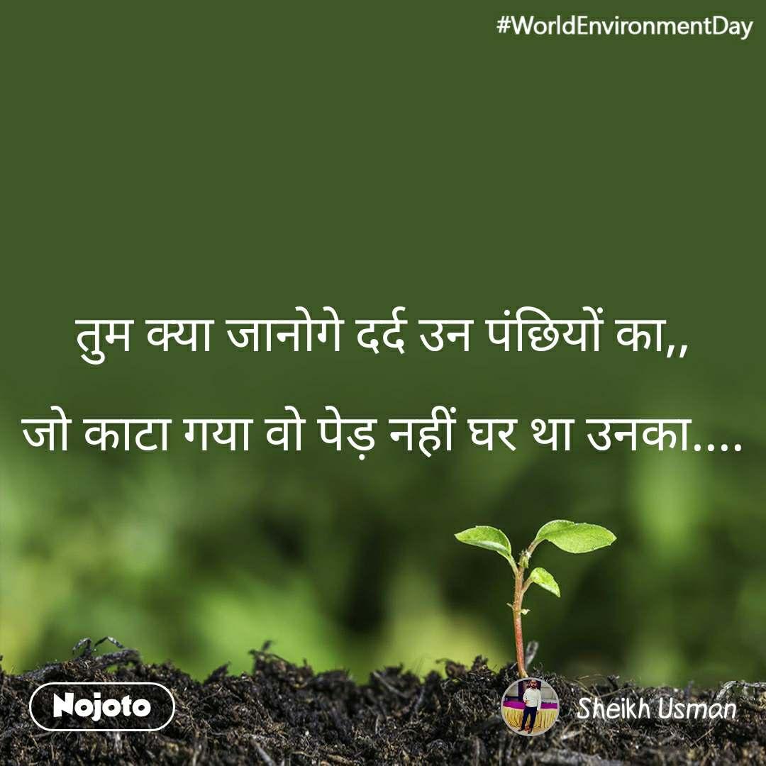 #WorldEnvironmentDay तुम क्या जानोगे दर्द उन पंछियों का,,  जो काटा गया वो पेड़ नहीं घर था उनका....