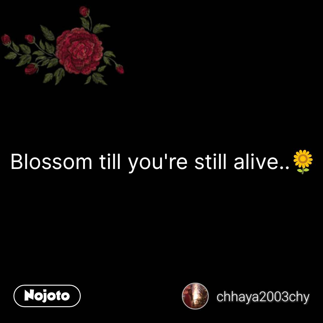 flower sms shayari quotes Blossom till you're still alive..🌻 #NojotoQuote