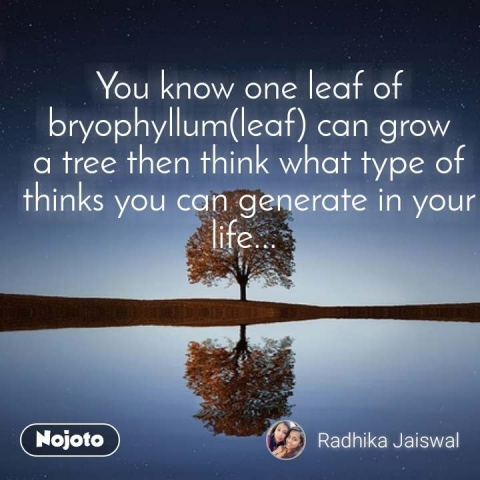 You know one leaf of bryophyllum(leaf) can grow a tree then think what type of thinks you can generate in your life...