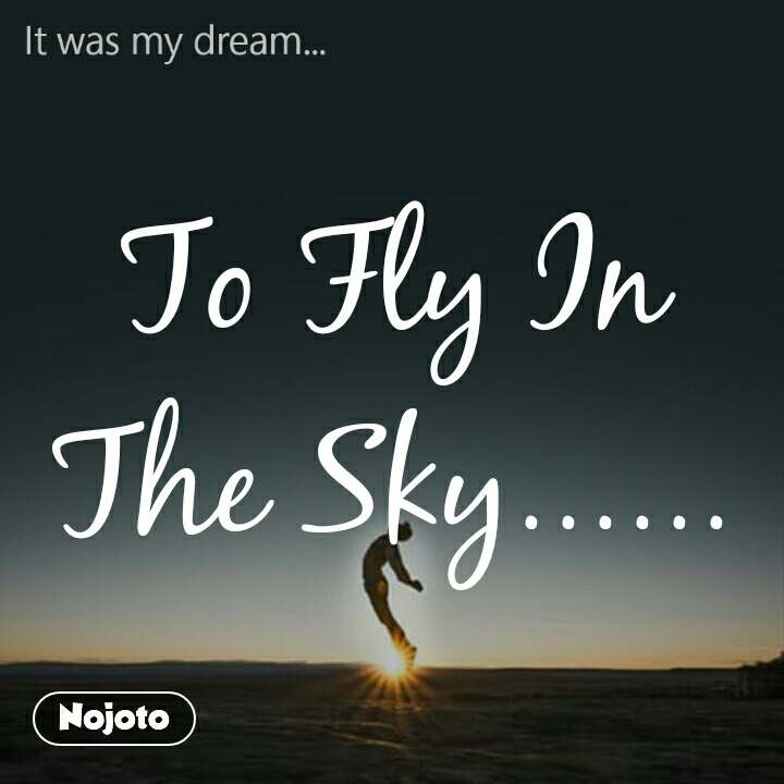 It was my dream To Fly In The Sky......