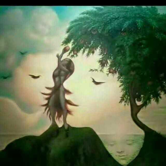 Rooh_Lost_Soul  तस्वीर तुम्हारी हो और लफ्ज़ मेरे या फिर मेरे अल्फाज़ो को दे दो कोई अक्स तुम ही ।। Insta 💐 rooh_lost_soul / Silent ocean 💐