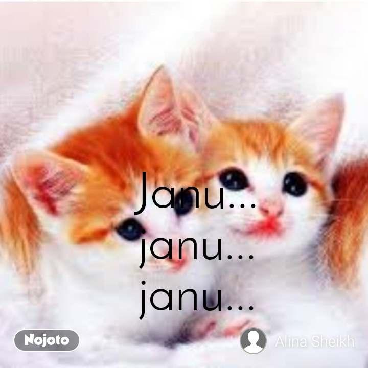 #DearZindagi Janu... janu... janu...