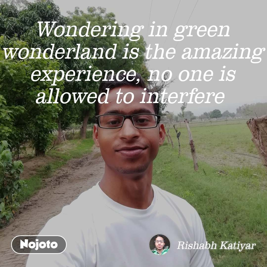 Wondering in green wonderland is the amazing experience, no one is allowed to interfere