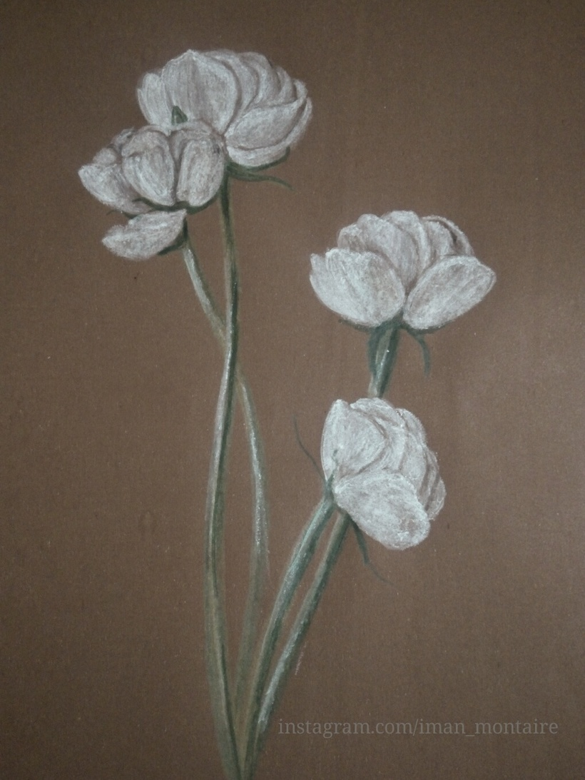 White Flowers Pastel On Felt Quotes Shayari Story Poem Jokes