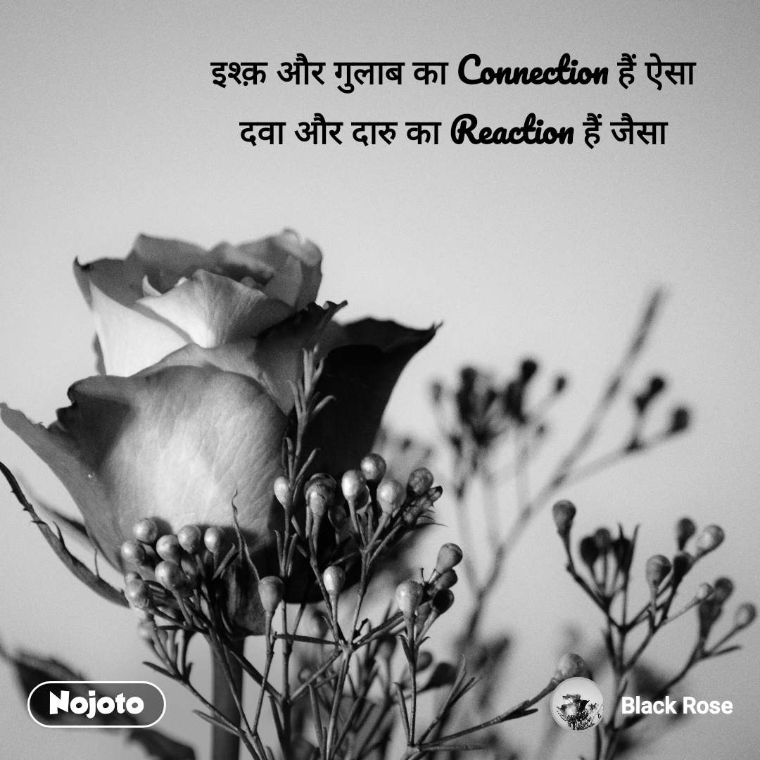 इश्क़ और गुलाब का Connection हैं ऐसा  दवा और दारु का Reaction हैं जैसा