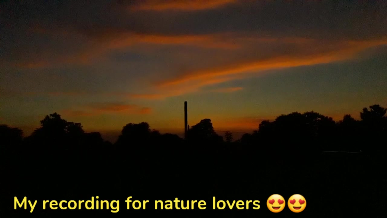 My recording for nature lovers 😍😍