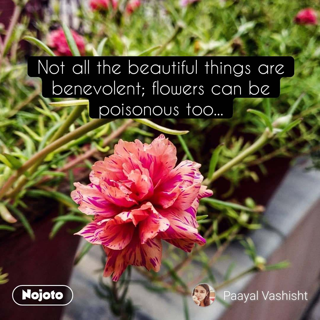 Not All The Beautiful Things A Quotes Shayari Story Poem