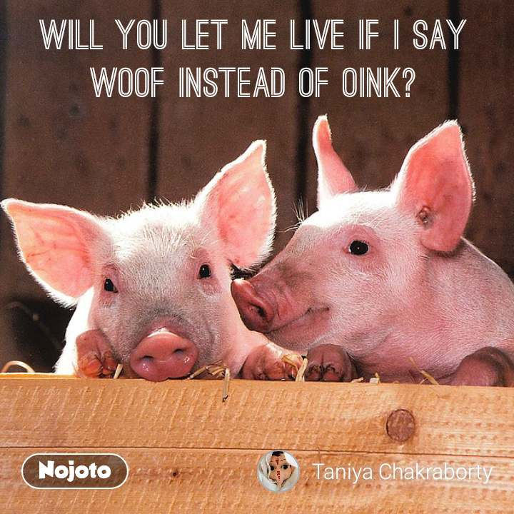 #DearZindagi Will you let me live if I say WOOF instead of OINK?
