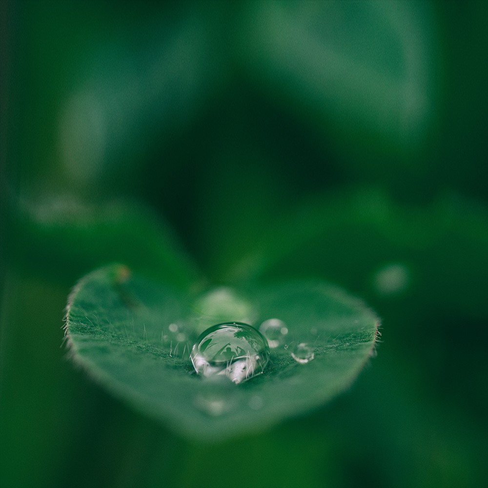 Droplet quotes